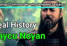 Who was Baycu Noyan